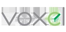 Logo Voxel